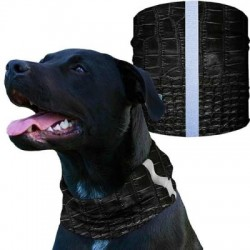 Dog Shields with Reflective Tape
